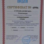 DSC_0556